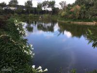 bán nhà biệt thự sân vườn giữa lòng tp đà lạt tỉnh lâm đồng dt 10500m2 giá 96 tỷ tl