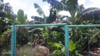 Bán đất sào giá rẻ huyện Trảng Bom LH: 0932144611
