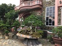 Bán nhà Khu phố Hoa Sứ Kim Chi Hoa Anh Đào TPĐà Lạt, Hơn 10500m2 Biệt thự 4 Tầng Chỉ 96 tỷ LH: 0905122923