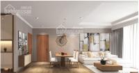 bán căn hộ penthouse có sân vườn chung cư thuận việt q11 tphcm sở hữu 1 ch đậu xe hơi vĩnh viễn