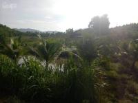 Bán lô đất TCLN và đất TC hàng năm 37000m2 xã Khánh Bình huyện Khánh Vĩnh LH: 0935700735