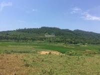 Chuyển nhượng 5000m2 đất thôn Mái xã Yên Bài huyện Ba Vì thích hợp làm homestay ,khu nghỉ dưỡng LH: 0932386883