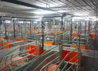 Vỡ nợ bán trang trại 8 ha hiện đang cho thuê 450 triệu 1 tháng, giá bán 55 tỷ chốt, ĐT 0909,136,007 LH: 0931311926