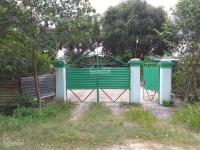 Bán trang trại nuôi Heo tại Xã Thái Mỹ - Củ Chi LH: 0938716724
