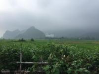 nhà vườn đẹp nghỉ dưng cuối tuần view đồng núi thổ cư 1000m2 cư yên lương sơn hoà bình