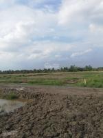 gia đình cần tiền bán gấp lô đất phước khánh đất trồng cây lâu năm trọn sổ 950tr 1500m2 LH: 0931584036