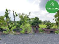 Cho thuê khu đất 5000m2 cù lao phường Hiệp Hòa, Biên Hòa - 0949123123