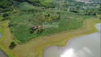 Chính chủ cần ra đi lô đất tại Sông Hinh, Phú Yên giá rẻ như cho 90000đm2 LH: 0382488297