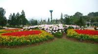 Bán gấp nhà đường Phù Đổng Thiên Vương trung tâm tp Đà Lạt, gần trường đại học Đà Lạt, giá 8 tỷ LH: 0931553781