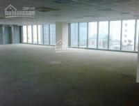 Cho thuê 120m2, 230m2, 500m2 TTTM tòa nhà Center Point - Hoàng Đạo Thúy lh 0903226595