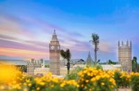 Mở bán đất nền Khu đô thị mới Cát Tường Phú Hưng, Đồng Xoài LH: 0931783783