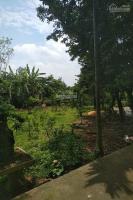 chi tiết Cần chuyển nhượng lô đất 2350m2 đã có khuôn viên biệt thự nhà vườn hoàn thiện tạiCổ Đông,Sơn Tây,HN LH: 0986442009