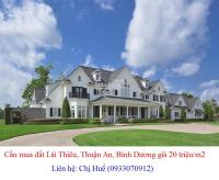 Cần mua đất Lái Thiêu, đường Lái Thiêu 45, Lái Thiêu 41, Lái Thiêu 42, Lái Thiêu 44 giá 20 tr/m2