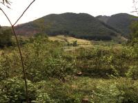cần bán 4000m2 đất thổ cư tại huyện thạch thất 400m2 đất ở lh 0975205182