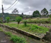 Bán đất nhà vườn tại Tp Bảo Lộc Lâm Đồng LH: 0916729139