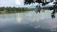 chính chủ cần bán 104 ha đất và hồ tại yên bài ba vì hà nội