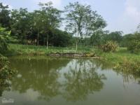 cần chuyển nhượng lô đất 1440m2 địa thế đẹp nhất làm nhà vườn khu nghỉ dưng tại yên bài ba vì