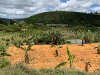 chính chủ cần bán vườn rẫy cà phê dt 4000m2 xã đạ nhim huyện lạc dương giá 2 tỷ lh 0948937060