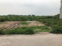 gia chủ cần tiền bán lô đất 54m2 tại giao tất b kim sơn gia lâm hà nội lh em thiện 0844444407