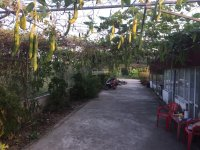 Cần bán trang trại mô hình VAC gần 5000 m2 tại Dương Kinh, Hải Phòng LH: 0979685986
