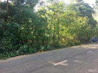cần bán lô đất 2100m2 đất làm biệt thự nhà vườn khu nghỉ dưng tại yên bài ba vì hà nội