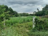 đất mặt tiền cây gõ 1942m2 35x55m an phú củ chi