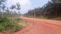 bán đất mẫu 62923m2 hơn 6ha và 108ha tại xã tân định huyện bắc tân uyên bình dương