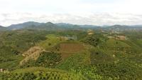 Khu nghỉ dưỡng 3,6 ha, view đồi, đường lớn, Cách trung tâm Bảo Lộc 13km LH: 0337009938