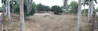 bán 4441m2 đất nhà vườn đường đồng trạng cổ đông sơn tây giá 68 tỷ 0981 756 159