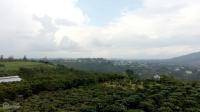 khu nghỉ dưng 2000m2 view đỉnh núi nhìn ra ql20 cách trung bảo lộc tâm 6 km