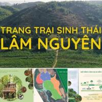 Bán Trang Trại đất trên Lâm Đồng trồng cây sầu riêng LH: 0988213939