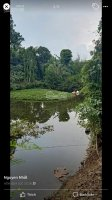 Gia đình cần bán đất vườn Xã Xuân Sơn HChâu Đức LH 0909788800