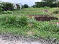 cần bán đất đức hoà long an 120m2 780 triệu lh 0948303223