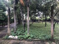 bán 4450m2 đất trang trại nhà vườn xóm chùa xã tiến xuân huyệt thạch thất