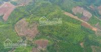 FARM SINH THAI LÂM NGUYÊN 580 TRIÊU4050 m2, LH 0974440807 LH: 0974440807