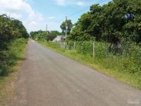 Vị trí đẹp, 15m mặt tiền đường nhựa, trồng Điều đã có thu, bằng phẵng, thích hợp lập trang trại LH: 0978696738