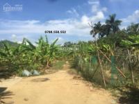 bán đất 93000m2 có vườn có nhà xã Khánh Phú, Khánh Vĩnh giá rẻ LH 0788558552