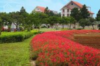 the phoenix garden căn đầu tư vị trí đẹp đường lớn 22m khu tiện ích