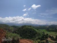 600tr4000m2 đầu tư nông nghiệp , nhận lợi nhuận hàng năm từ Vuờn sầu riêng Musaking LH: 0938258211