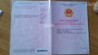 chính chủ cần bán 2 lô góc kdc samsung quận 9 lh 0911943966