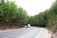 Bán 12 tỷ lô đất 27ha 270000 m2 đất trồng cây lâu năm Khánh Vĩnh, Khánh Hòa LH: 0935868616