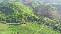 Trang Trai Sinh Thai Nghi Dương Lâm Đông- Mơ ban đơt 1580 triêu 4000m2,0974440807