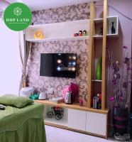 BÁN căn hộ Pegasus Võ Thị Sáu, full nội thất, giá siêu rẻ 0949268682