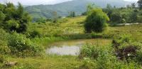 Bán rẻ lô đất trang trại nhà vườn tại Lương Sơn LH: 0379791789