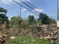 bán đất mặt tiền đường nguyễn chí thanh 70 x 341m cây lâu năm hưng phước hưng định ta bd