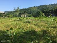 cần chuyển nhượng lô đất 5300m2 làm biệt thự nhà vườn giá rẻ nhất tại hợp hòa lương sơn hòa bình