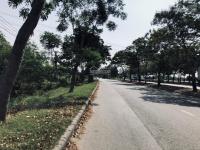 11000 m2 đất mặt tiền Nguyễn Văn Linh, LH: 0977954161