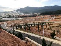 chính chủ bán gấp lô đất c2 01 kđt vạn xuân langbiang town đà lạt ngay tl 79 lh 0981990995