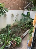 chính chủ bán nhà full nội thất gamuda gardens diện tích đất 1155m2 hướng tây tứ mệnh đã có sổ
