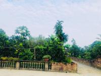 chuyển nhượng khuôn viên nhà vườn tại thôn hòa trúc xã hòa thạch quốc oai hà nội